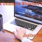 WordPress-training-in-Whitefield